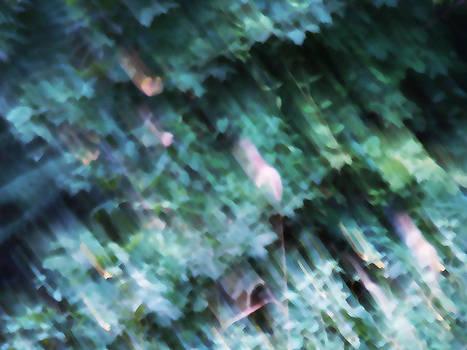 Forest by Bessie Reyes
