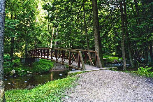 Darlene Bell - Forest Bridge