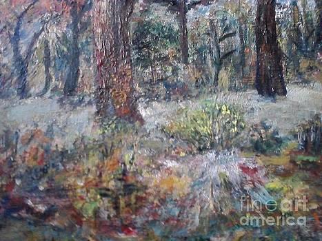 Forest Ege by Ilona Pincse