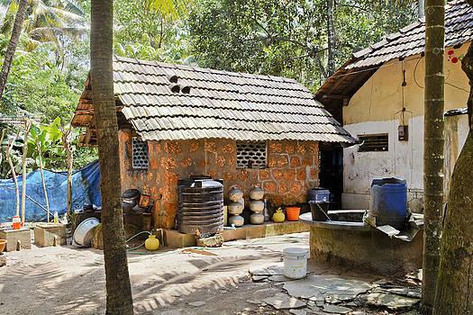 Kantilal Patel - Forest Glade