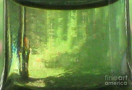 Forest in a bottle by Donna Renier