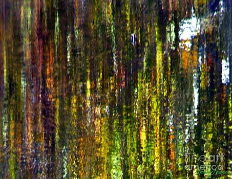 Forest of Color by Lorraine Louwerse