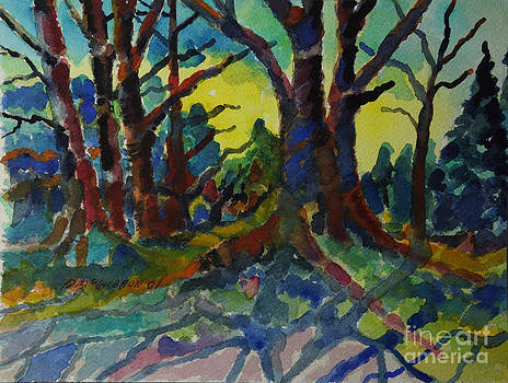 Forest Twilight by Donald McGibbon