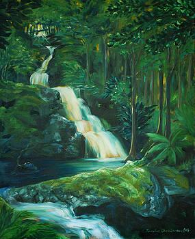Forest Waterfall by Jennifer Christenson