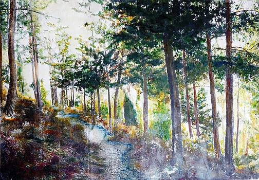 Forest with stream by Baruch Neria-Kandel
