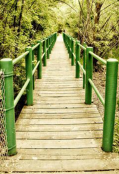 Forever Bridge by Carol Kristensen