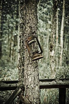 Forgotten Lantern by Jen Morrison