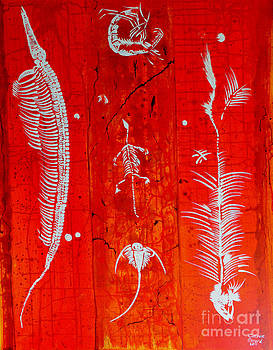 Fossils by Catrina louise  Attard