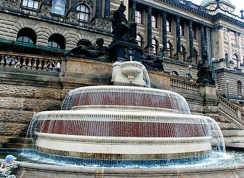 Pravine Chester - Fountain