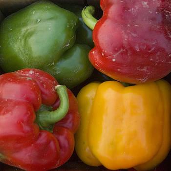 Four Peppers by Bernadette Kazmarski