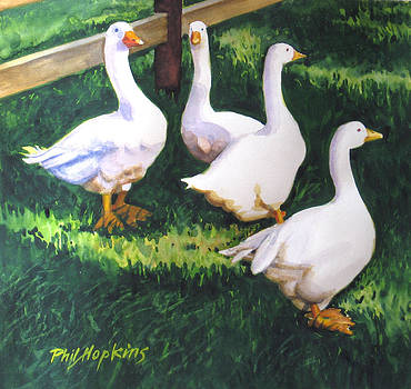 Four White Geese  by Phil Hopkins