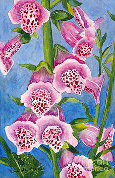 Foxgloves by Kimberlee Weisker