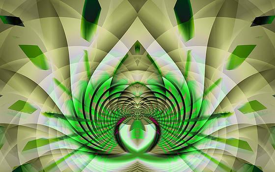Frederic Durville - Fractal Lotus
