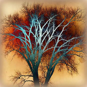 Marty Koch - Freaky Tree 1
