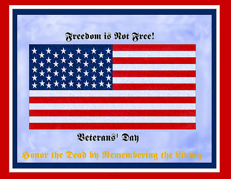 Freedom is Not Free by Anne Norskog
