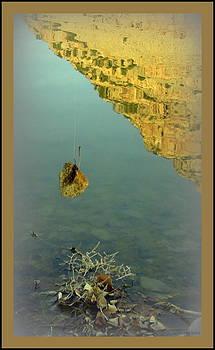 Fresh Catch of the Day by Lani PVG   Richmond