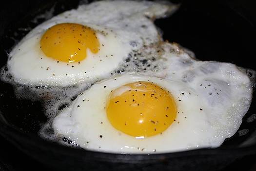 Fried Eggs by Unknown