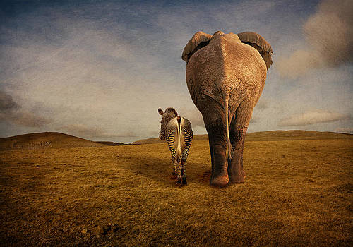 Friendship by Astrid Rieger