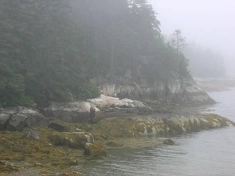 Friendship Island Fog by Julia Jones