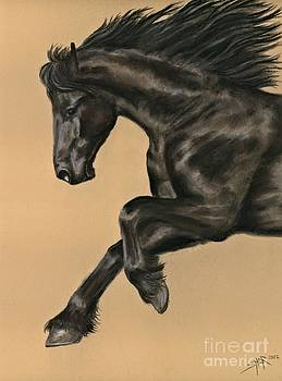 Friesian Portrait by Sheri Gordon