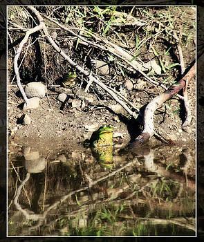 Frog King by Tiana McVay