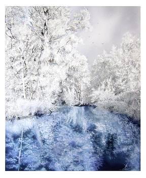 Frozen Beauty by Maria Varga-Hansen