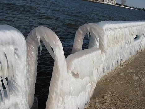 Frozen in Time by Harry Wojahn