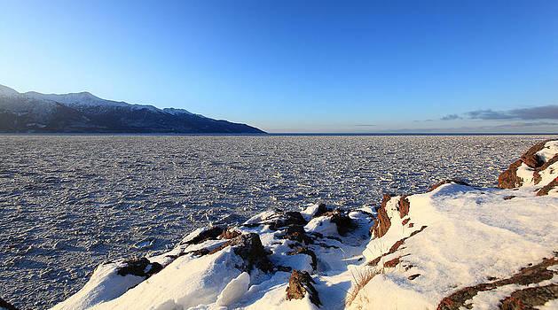 Frozen Sea Ice by Wyatt Rivard