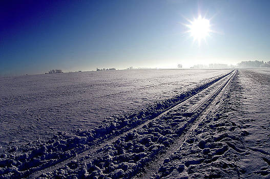 Frozen trail by Erik Tanghe