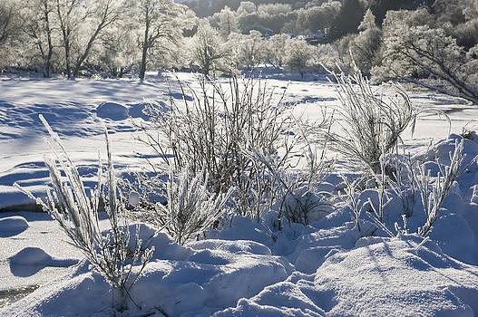 Howard Kennedy - Frozen Winter Landscape
