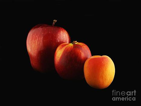Fruits Lineup by Alfredo Rodriguez