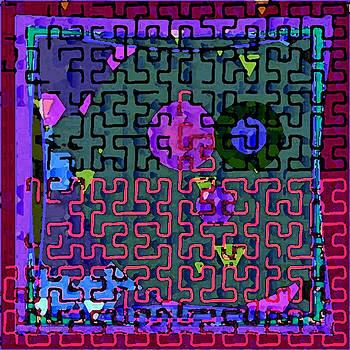 Dee Flouton - Fuchsia Maze