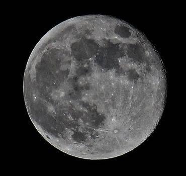 Full Moon by Alexander Spahn