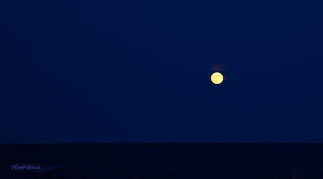 Michelle Constantine - Full Moon Over the Nantucket Sound