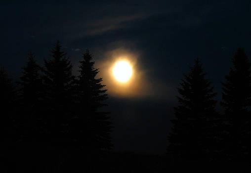 Full Moon Rising by Sandra Longstreet