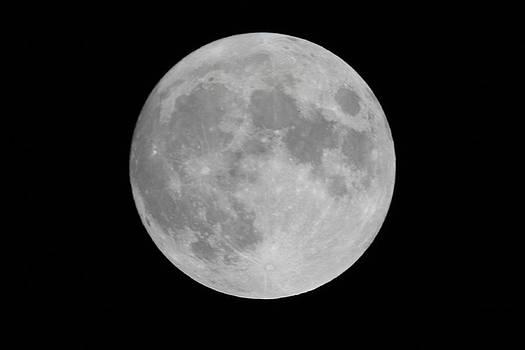 Full Moon by Thanasis Michalis