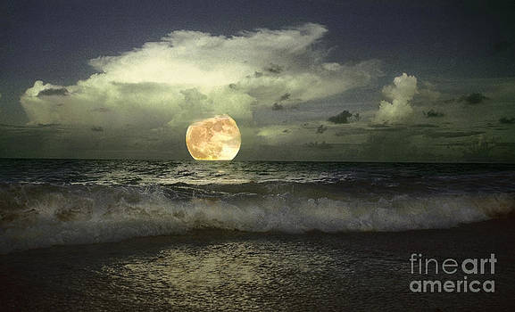 Full Moonrise on Jupiter Island by Richard Nickson