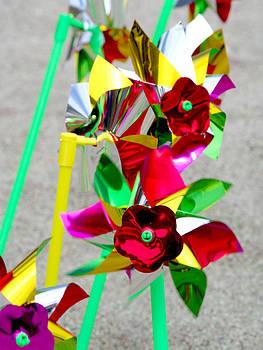 Fun with Pinwheels by Shaileen Landsberg