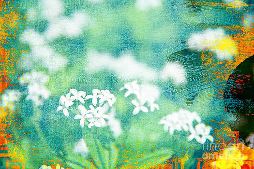 Funky White Flower Background by Rachel Duchesne