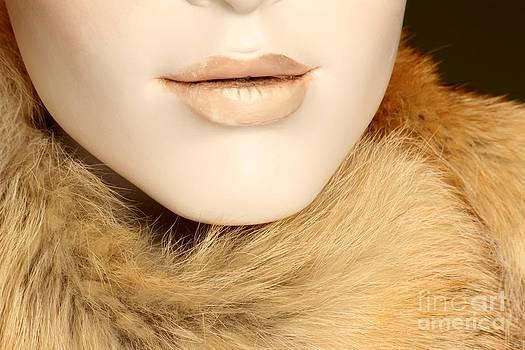 Sophie Vigneault - Fur
