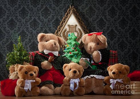 Fuzzy Bears 1 by Dinah Anaya