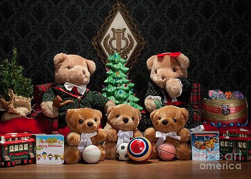 Fuzzy Bears 10 by Dinah Anaya