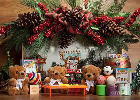 Fuzzy Bears 3 by Dinah Anaya