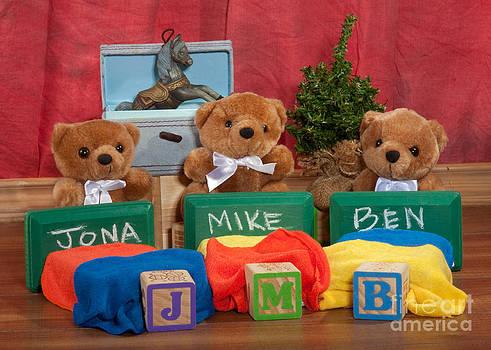 Fuzzy Bears 6 by Dinah Anaya