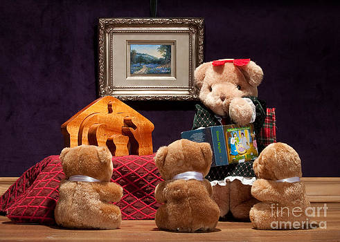 Fuzzy Bears 8 by Dinah Anaya