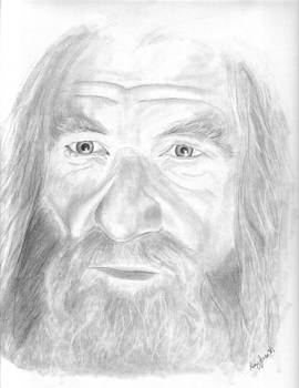 Gandalf the Grey by Amy Jones