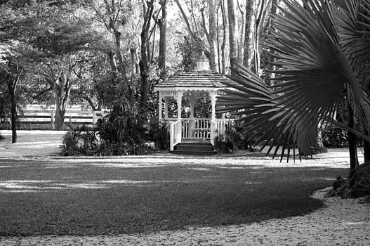 Garden by Ama Arnesen