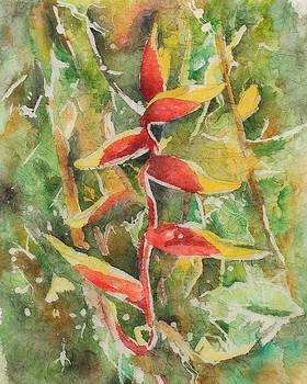 Garden Claws by Rosie Brown