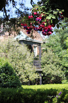 Deborah Hughes - Garden House