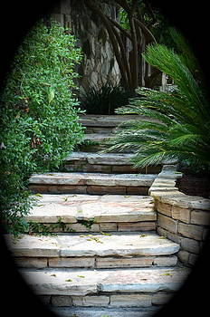 Garden Path by Kathy Lewis
